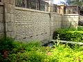 Garden in UAE.JPG