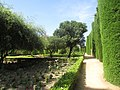 Gardens and Cypresses trees, Avenue of Kings, Alcázar, Cordoba, 21 July 2016 (1).JPG