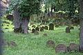 Gelnhausen Jüdischer Friedhof 18.JPG