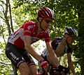 Giro d'Italia 2015, armee (18125951130).jpg