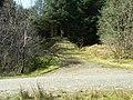 Glen Kin, Track to Bealach na Sreine - geograph.org.uk - 400190.jpg