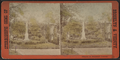 Glimpses in Greenwood Cemetery, from Robert N. Dennis collection of stereoscopic views.png