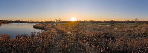 Golden hour sunset from the Dyle valley bird watching tower of Oud-Heverlee (DSC 2102 - DSC 2118).jpg
