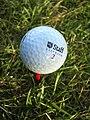 Golfball-AM.jpg