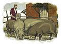 Gospel of Luke Chapter 15-4 (Bible Illustrations by Sweet Media).jpg