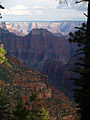 Grand Canyon Widforss trail. 09.jpg