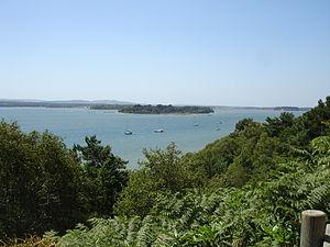 Furzey Island - Image: Greenand Furzey Island