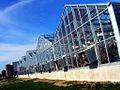 Greenhouses @ Purdue.jpg