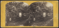 Greenwood Cemetery, from Robert N. Dennis collection of stereoscopic views 2.png