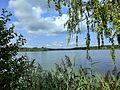 Großer Rußweiher 2 - panoramio.jpg