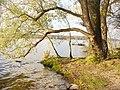 Grunewald - Havelblick (Havel View) - geo.hlipp.de - 30279.jpg