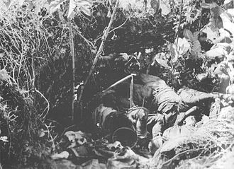 Matanikau Offensive - Dead soldiers from the Japanese 2nd Battalion, 4th Infantry Regiment lie piled in a ravine after being killed by mortar and small arms fire from U.S. Marines on 9 October 1942