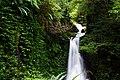 Gwongurai Falls in Lamington National Park.jpg