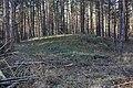 Hügelgrab bei Schköna.jpg