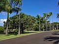 HI Honolulu Royal Mausoleum09.jpg