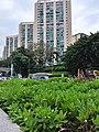HK 九龍城 Kowloon City 何文田 Ho Man Tin 公主道 Princess Margaret Road June 2019 SSG 71.jpg