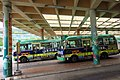 HK 大埔墟站 Tai Po Market Station Public Light Buses Scheduled Service Stand June 2018 IX2 10.jpg