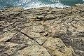 HK ALC 鴨脷洲 Ap Lei Chau 東博寮海峽 East Lamma Channel 鴨脷排 Ap Lei Pai view 香港仔海峽 Aberdeen Channel November 2019 IX2 10.jpg