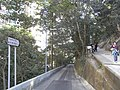 HK Mid-levels 舊山頂道 Old Peak Road view 地利根德里 Tregunter Path Feb-2011.JPG