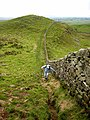 Hadrian's Wall National Trail east of Caw Gap - geograph.org.uk - 999468.jpg