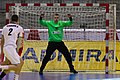 Handball-WM-Qualifikation AUT-BLR 024.jpg