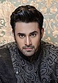 Handsome Pearl V Puri Clicked by Sajid Shahid (42093188620) (cropped).jpg
