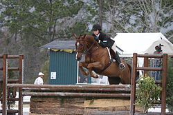 definition of equitation