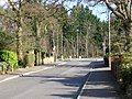 Hatch Ride, Crowthorne - geograph.org.uk - 1186701.jpg