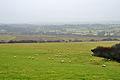 Hatherleigh Moor 1.jpg