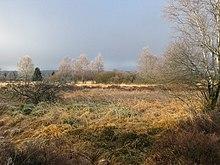 Regione orientale. Al confine con la Germania il terreno è poco coltivabile e selvaggio.
