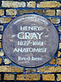 Henry Gray 1827-1861 anatomist lived here.jpg