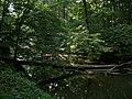 Heron Rookery - panoramio.jpg