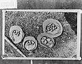 Het zoeken van kievitseieren, Bestanddeelnr 901-6067.jpg