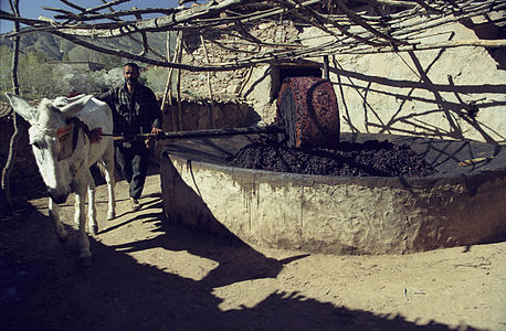 High Atlas-The olive grinding mill (js).jpg