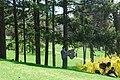 High Park, Toronto DSC 0178 (17186332977).jpg