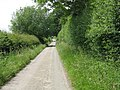Holbach Lane - geograph.org.uk - 1370151.jpg