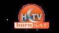 Hornsat Logo.png
