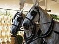 Horse drawn hearse horses City of London Cemetery 1.jpg
