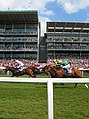 Horses pass the Ebor and Knavesmire stands - geograph.org.uk - 826215.jpg
