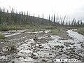 Hosford Creek Water Quality Testing, Yukon-Charley Rivers, 2003 (dba4869c-ca6c-426c-b1f1-5b24186d2b5b).jpg