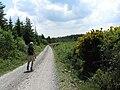 Hot Hiking - geograph.org.uk - 1339534.jpg