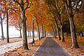 Hungary, Balatonfüred, Rabindranath promenade in autumn.jpg
