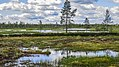 IMG 1994 Finland (14987203102).jpg