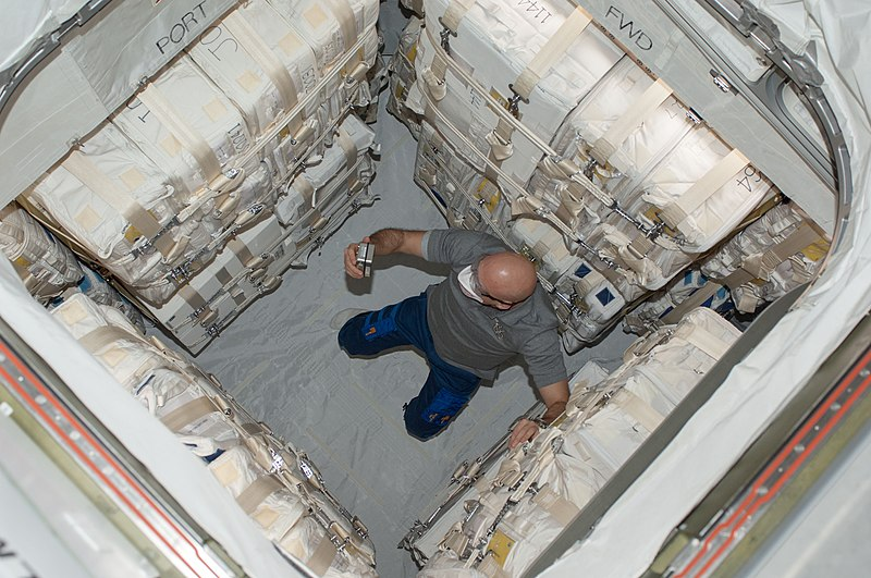 File:ISS-36 Luca Parmitano in the newly attached Japanese HTV-4.jpg