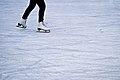 Ice Skates (6625045137).jpg