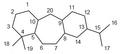 Icetaxano - Numeración.png