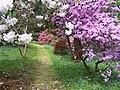 In Geilston Gardens - geograph.org.uk - 31952.jpg