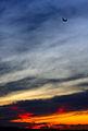 In the red sky (2180791789).jpg