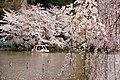 Inokashira Park 2009-04-05 (3446864916).jpg