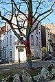 Ixelles, place henri conscience, albero con lavoro a maglia a ragnatela colorato, 04.jpg